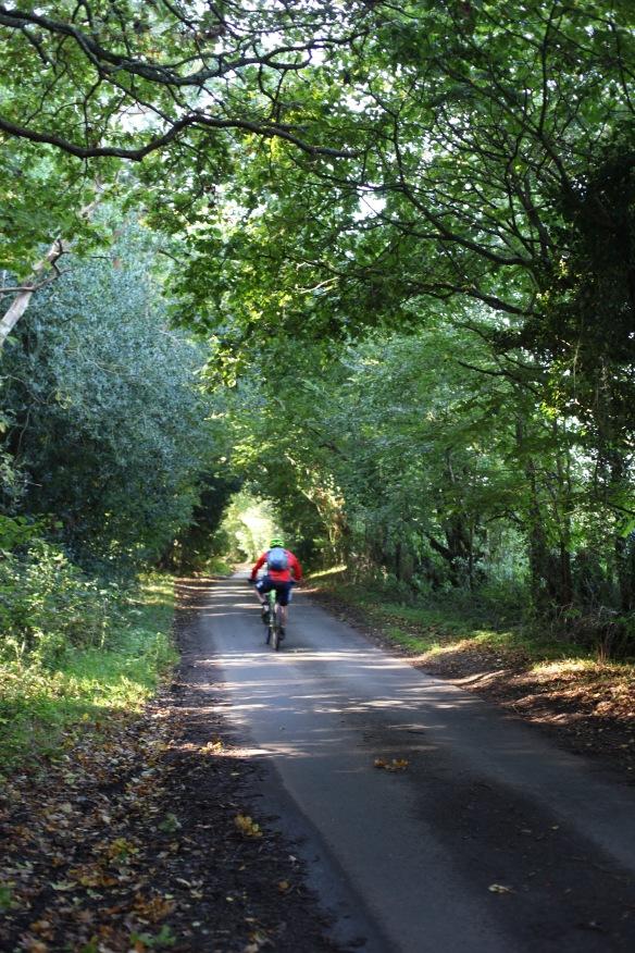 Cyclist on Charles's Lane 2