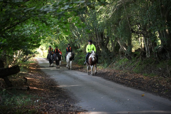 Horse riders on Charles's Lane 6
