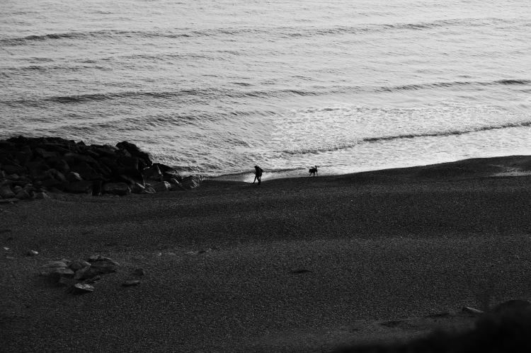 Man and dog on beach