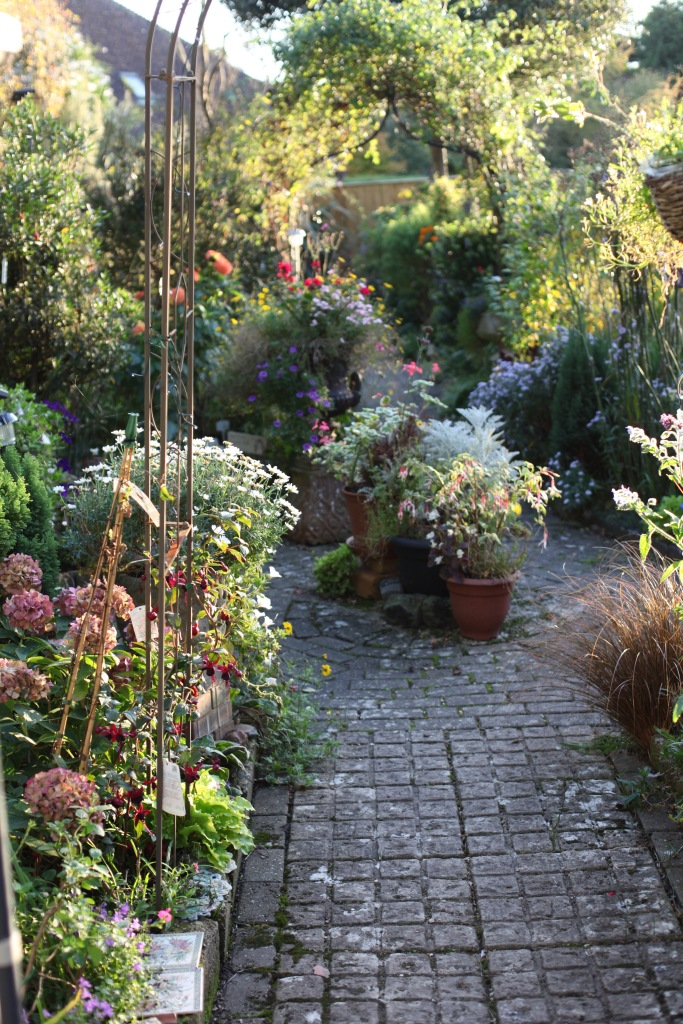 Garden view from Stable Door