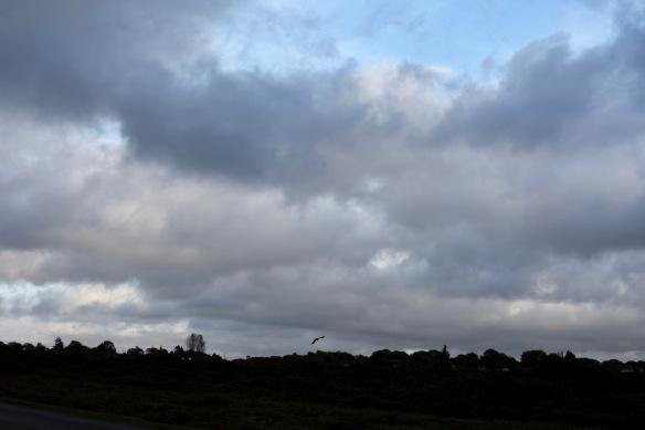 Cloudscape 4