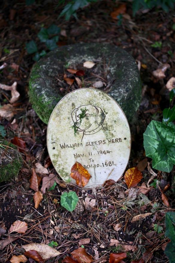 Dog's headstone