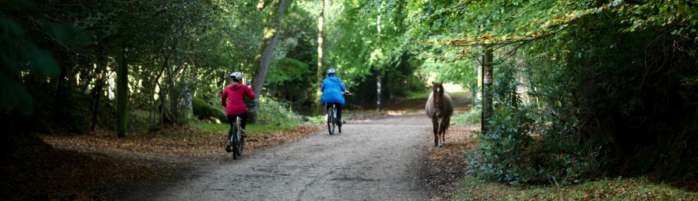 Cyclists and pony