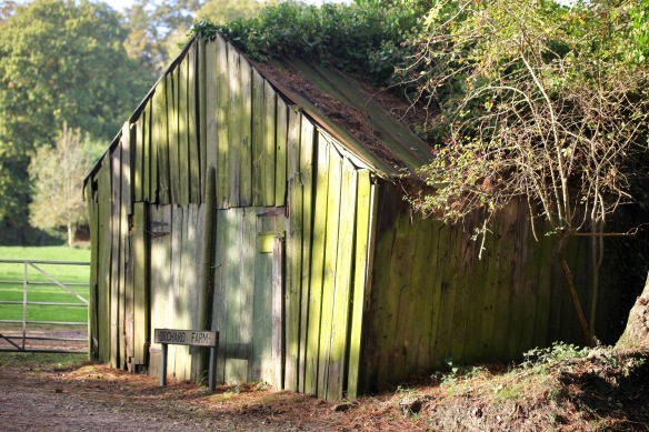 Orchard Farm shed
