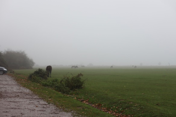 Ponies in mist 1