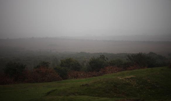 Hinchelsea Moor 2