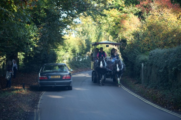 Burley Wagon Rides vehicle
