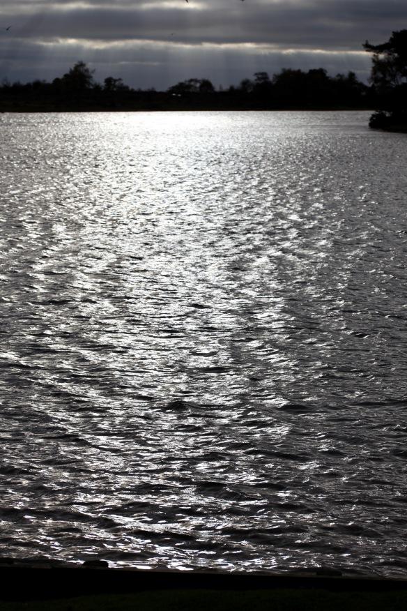 Hatchet Pond 2