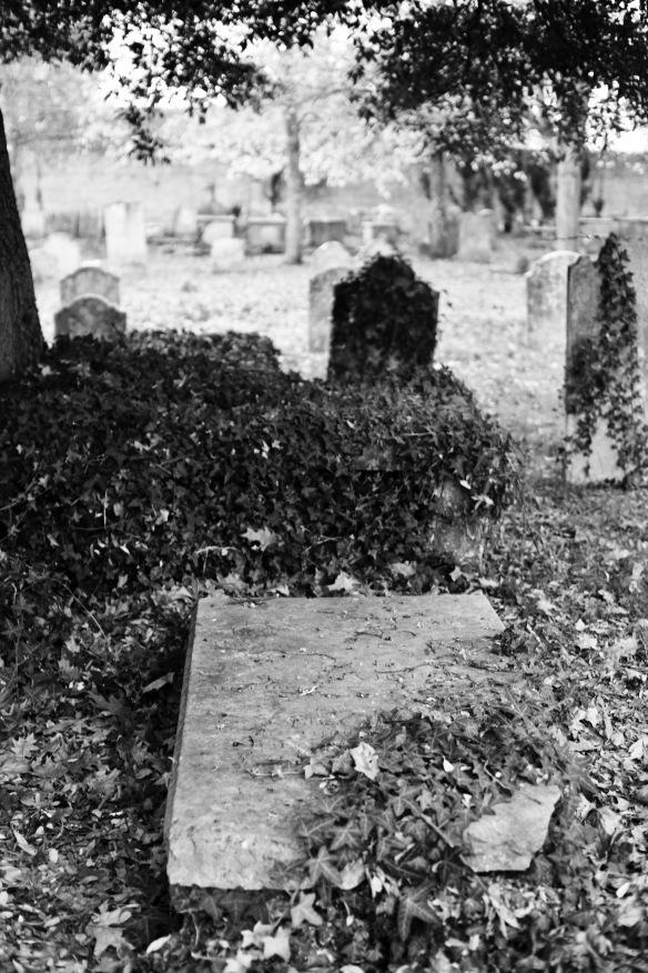 St Thomas and All Saints graveyard 2