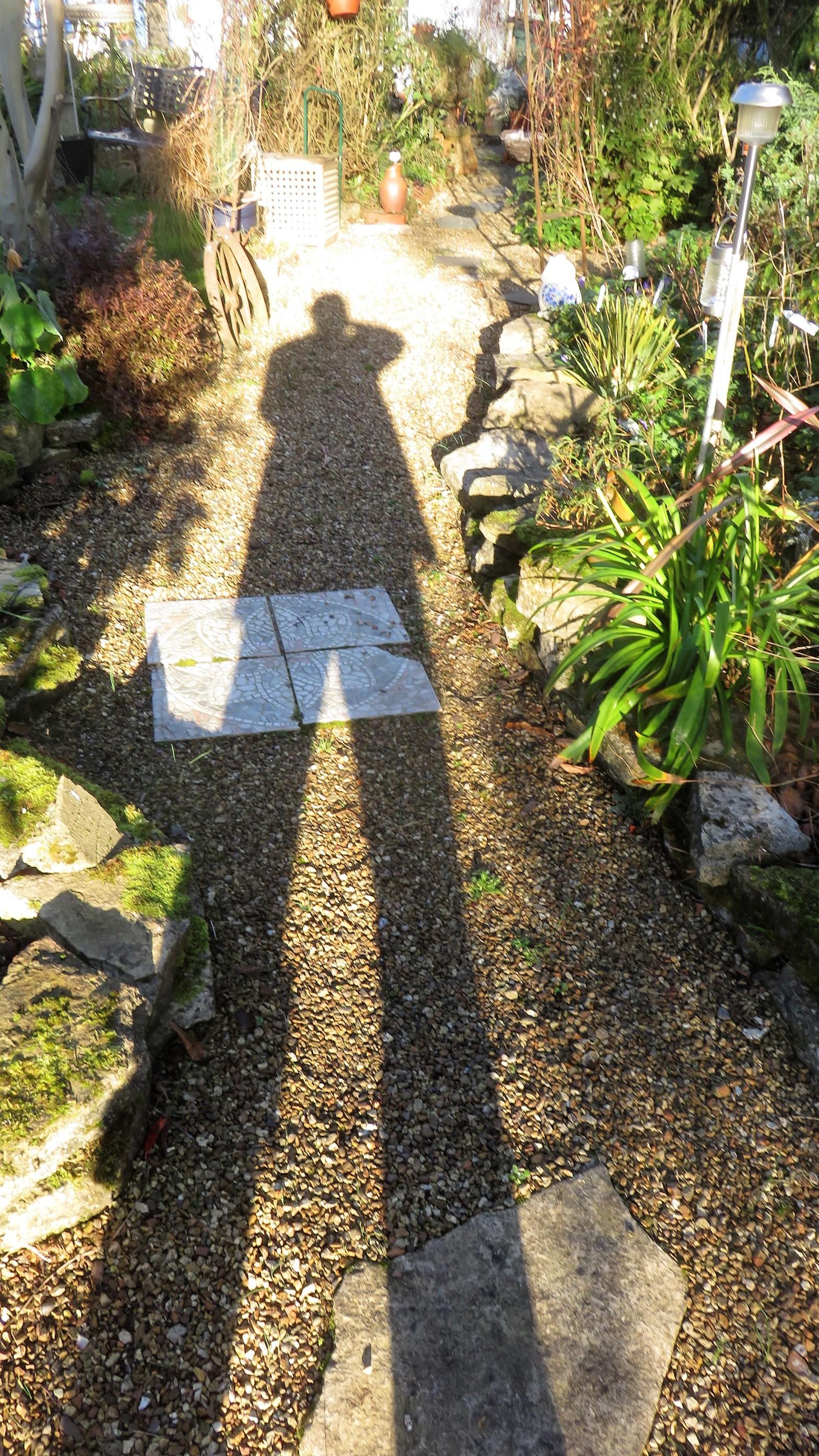 Derrick's shadow