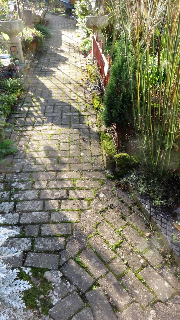 Brick Path shadows
