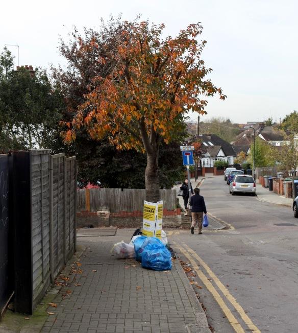 Rubbish in street 1