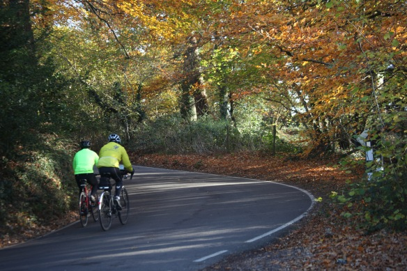 Cyclists and autumn leaves