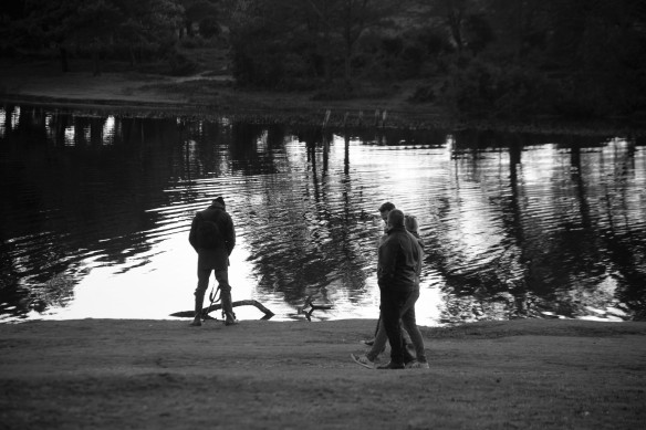 Silhouettes by pond