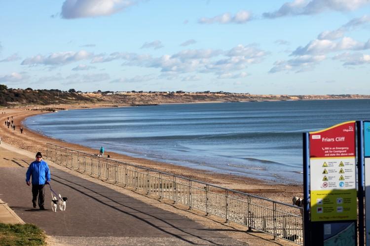 Dog walker at Friars Cliff