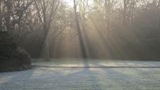 Sun's early rays