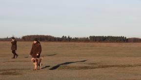 Dog walkers 3