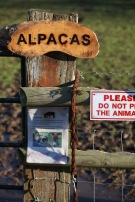 Alpacas sign