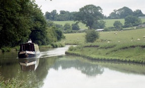Narrowboat 7.03