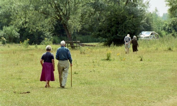 Couples walking 7.03