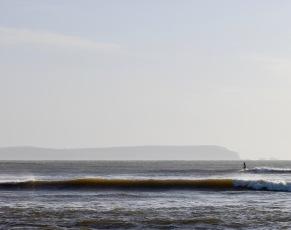 Surfer 10
