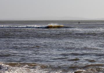 Surfer 11