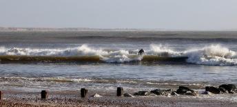 Surfer 16