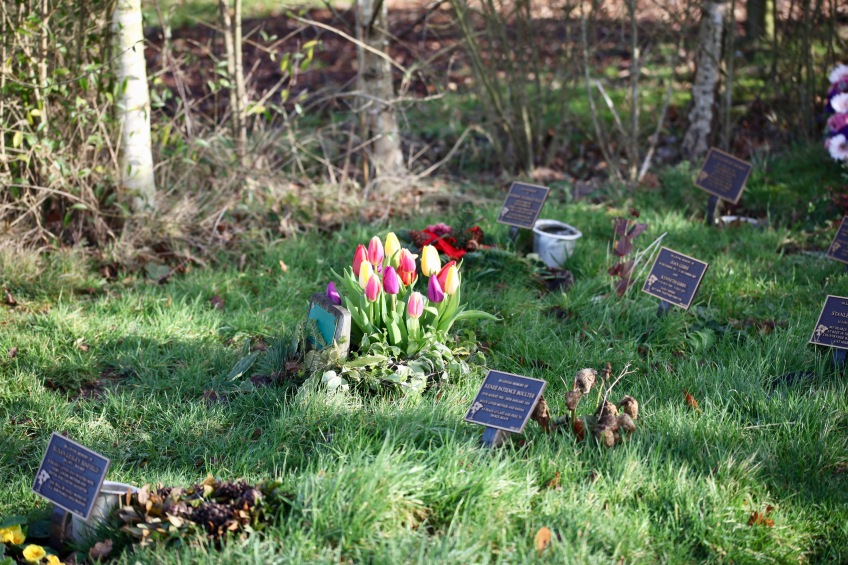 Woodland Burial Ground 9