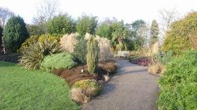 Winter garden 5