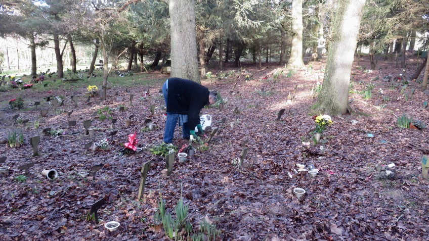 Jackie planting primula and snowdrops