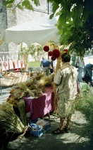 Market dried flowers 9.03