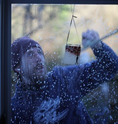 Aaron cleaning windows 7
