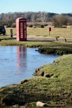 Phonebox reflected in icy pool 1