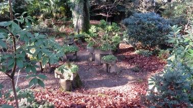 Autumn leaves, sunlit path