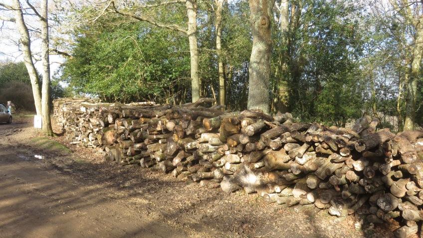 Logs stack 1