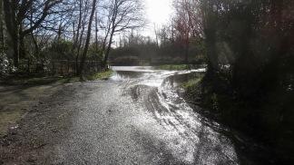 Rodlease Lane
