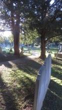 St Mary & St Nicholas Churchyard