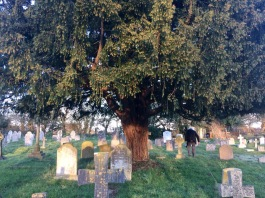 Derrick in graveyard
