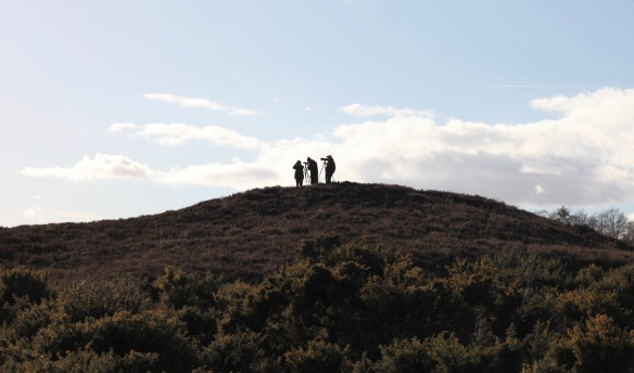 Photographers on hill (silhouette)