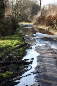 Waterlogged road
