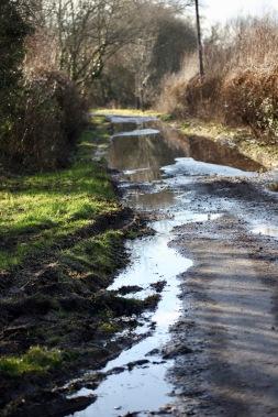 Waterlogged road