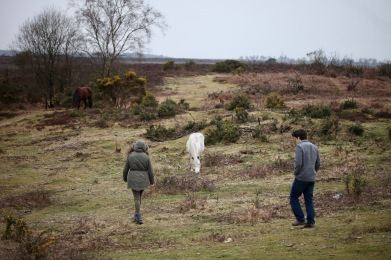 Flo, Dillon and Ponies