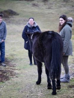 Flo and pony (Becky, Dillon)