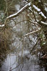 Stream from Leybrooke Bridge