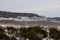 Snow on moors