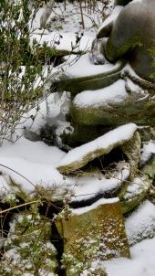 Waterboy frozen