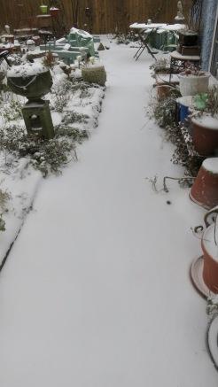 Kitchen path in snow