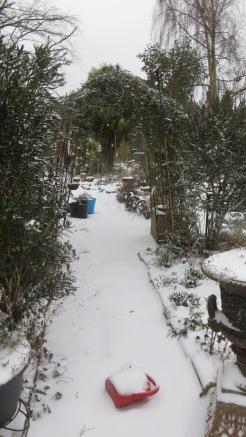 Gazebo path in snow