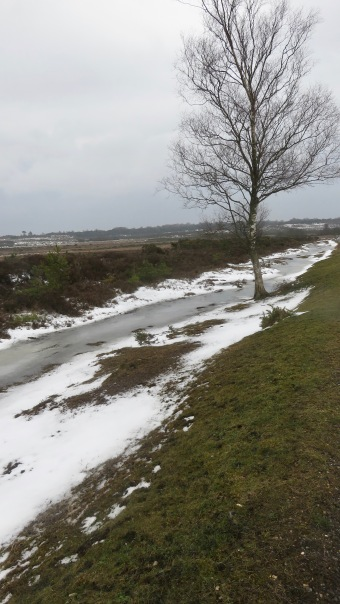 Snow and iced ditch