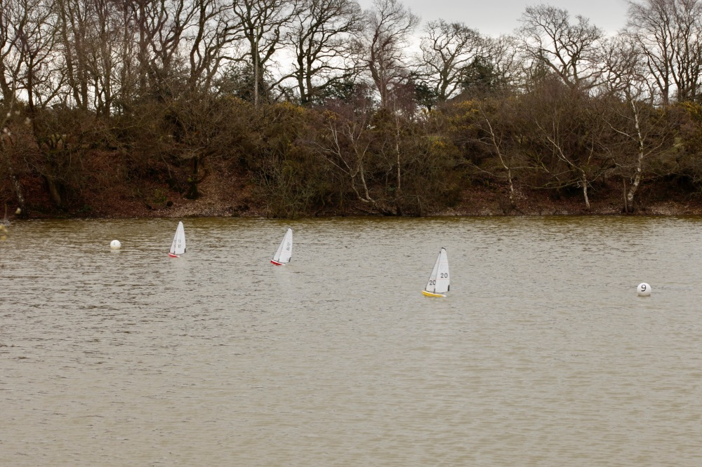 Setley Pond model yacht racing